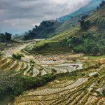Il Vietnam in 15 giorni: Cosa vedere dal sud all'estremo nord